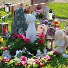 Grabgestaltung-Tierfriedhof-Wien_15