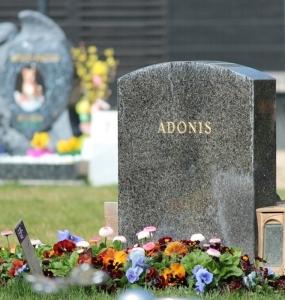 Grabgestaltung-Tierfriedhof-Wien_2