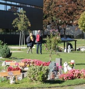 Tierfriedhof-Wien_Ueberblick5